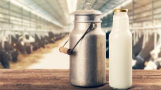 Milk and a jug