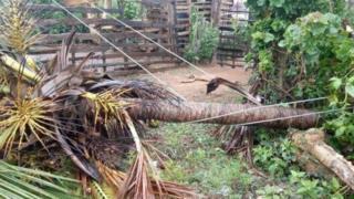 ஃபானி புயல் கரையை கடக்க தொடங்கியது - ஒடிசாவில் கனத்த மழை
