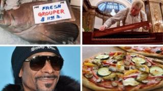 Колаж: риба, музикант, Снуп Дог, піца