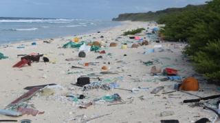 มีขยะพลาสติก ราว 37.7 ล้านชิ้นบนชายหาดของเกาะแฮนเดอร์สัน