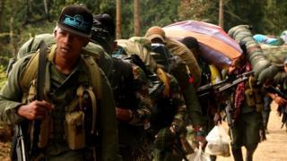 Militantes de las FARC caminando hacia zonas de normalización.
