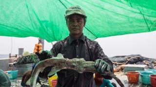 کشتیهای صید ماهی چینی