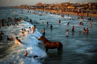 Man washes his horse in the waters of the Mediterranean Sea