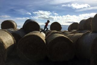 Boy on hay bales