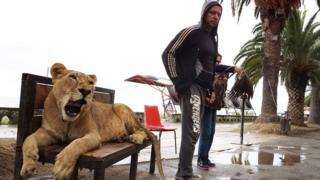 Un tigre con su dueño