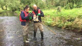 Department of Agriculture, Environment and Rural Affairs staff monitoring water quality at Minnowburn near Belfast