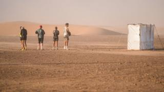 Toilet cubicles in the Sahara desert