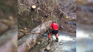 Mr Elliott clearing a fallen tree from a road.
