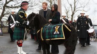 Принц Гарри и Меган Маркл встретились с майором Марком Уилкинсоном и полковым пони Круканом IV