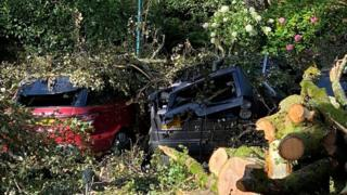 sports Two cars crushed under