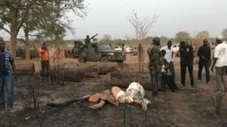L'armée sénégalaise se déploie pour récupérer les troncs coupés