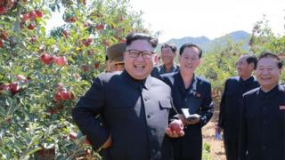 This undated picture released from North Korea's official Korean Central News Agency (KCNA) on September 21, 2017 shows North Korean leader Kim Jong-Un visiting a fruit farm at Kwail County, South Hwanghae Province.