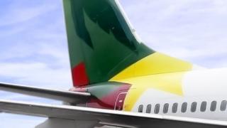 """Grâce à """"la bravoure"""" de son équipage, l'avion a atterri """"sans heurt"""", selon la Camair-Co."""