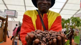 Les coopératives de cacao fournissent la matière première.