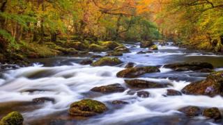 Yr Afon Conwy ym Metws-y-Coed