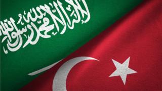 علما السعودية وتركيا