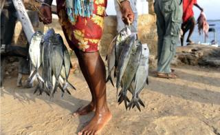 Fishermen in Lamu hold their catch to sell at the market in 2012.