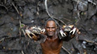 يصطاد خوسيه من أسماك الكابوريا يوميا نحو 200 ريال برازيلي (40 استرليني) أسبوعيا