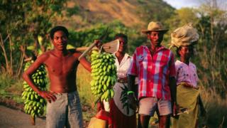FAO, Madagascar
