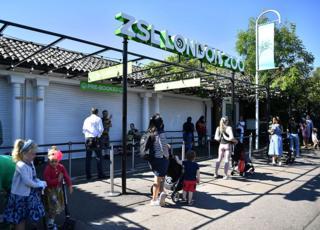 Visitors queue to enter London zoo