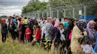 Macaristan sınırındaki göçmenler