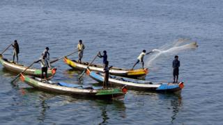 Indian fishermen cast their nets into a river in the East Godavari district of Andhra Pradesh.