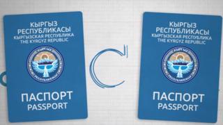 2012-жылдан тартып УКМК тарабынан паспортко байланыштуу 150 кылмыш иши козголгон