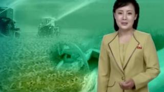 朝鲜央视旱灾特别报道内的女主播