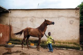 Boy and a horse by Pascale Scherrer
