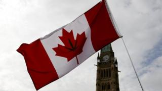 A Canadian flag with a marijuana leaf on it.