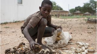 Les autorités Zimbabwéennes a fait savoir que la moitié de la population est menacée de famine.