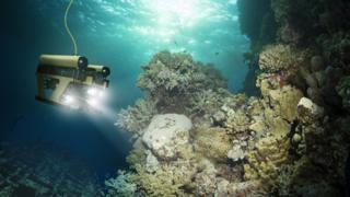 Profunidad del Oceano