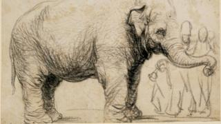 Rembrandt's Asian elephant, c 1637, black chalk and charcoal