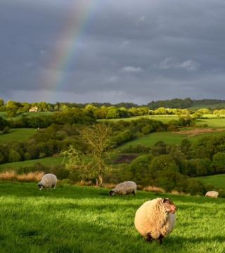 A rainbow over fields