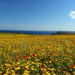 West Pentire, near Newquay in Cornwall