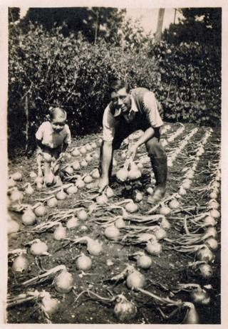 Clifford Staker and son Roger in an onion patch