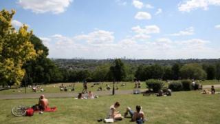 People sunbathing in a park