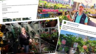 A composite image shows two video tours and two written posts / emails about gardening