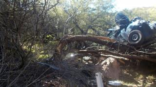 Image shows car crushed and stuck in the tree