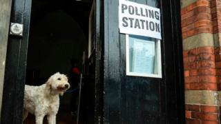 "A dog standing in a doorway next to next to a sign saying ""polling station"""