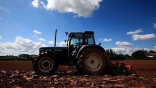 Farmer in a tractor