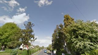 Whitethorn Lane