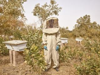 in_pictures ldrissa Sidibe, Beekeeper