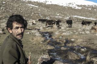 Gümrü dağlarında sürüsünü güden bir çoban
