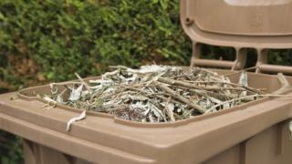 Brown bin and garden waste