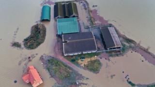 A flooded farm in Bardney, Lincolnshire