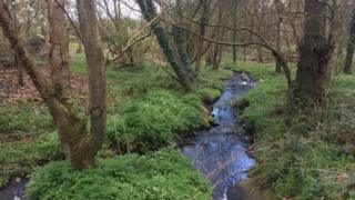 Low level pollution can affect rivers and streams
