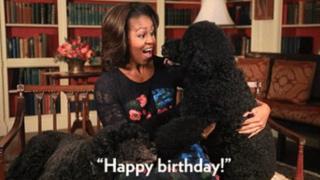 Imagem de GIF com Michelle Obama e cachorro, acompanhada da frase Feliz Aniversário