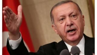 Shugaba Erdogan ya ce ba za su karaya ba
