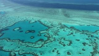 A Grande Barreira de Corais, em registro na costa de Queensland
